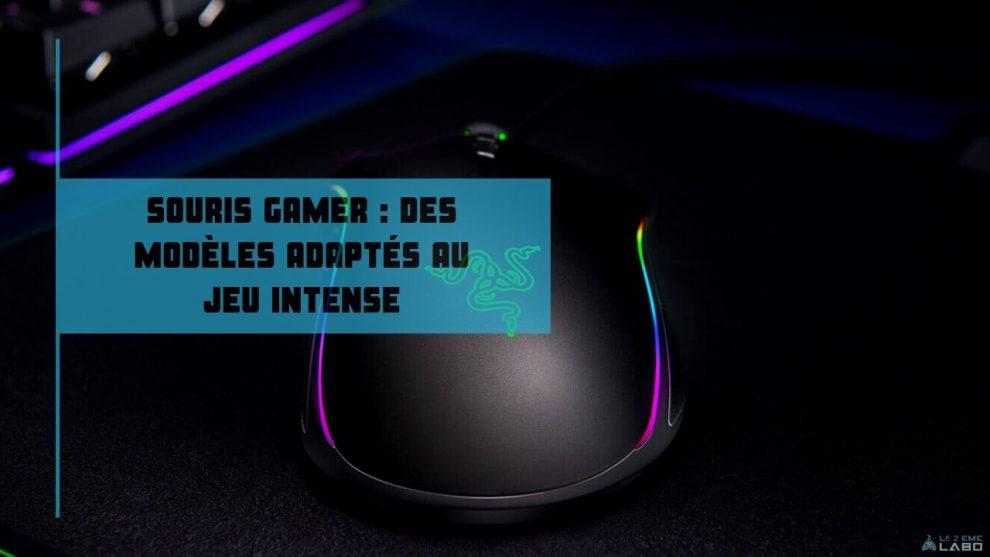 la souris gamer _ des modèles ergonomiques adaptés au jeu intense